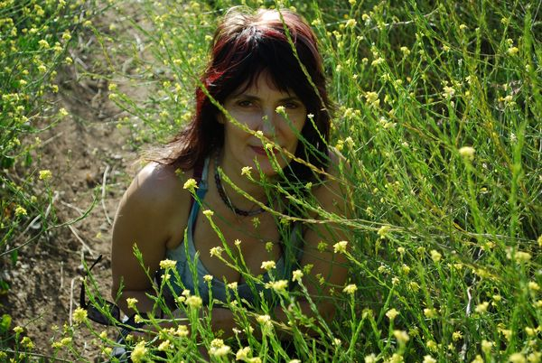 Kp in the yellow flowers1